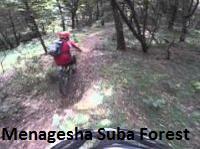 Menagesha Forest day trip